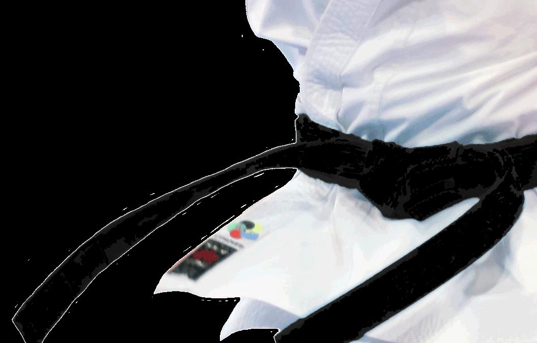 Karate, 9. Kyu – Prüfungsprogramm